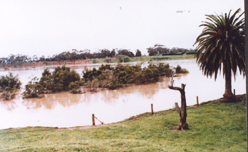 http://web02.wyndham.vic.gov.au:80/hipres/images/local_history/368.jpg