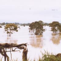 http://web02.wyndham.vic.gov.au:80/hipres/images/local_history/366.jpg
