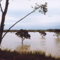 http://web02.wyndham.vic.gov.au:80/hipres/images/local_history/362.jpg