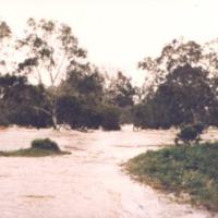 http://web02.wyndham.vic.gov.au:80/hipres/images/local_history/371.jpg